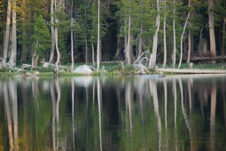 Wright's Lake Quietude
